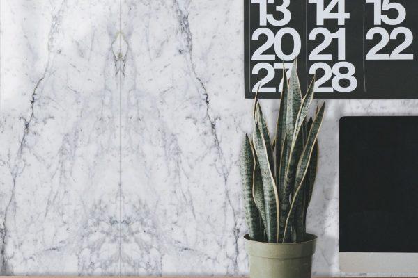 CarraraDesk with Plant300dpi 1