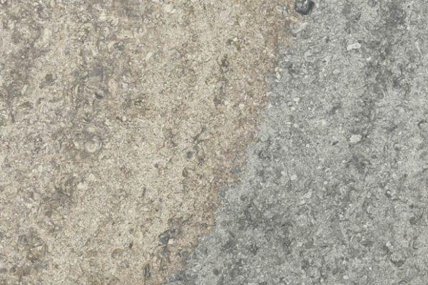 Trajan ANT Mixed